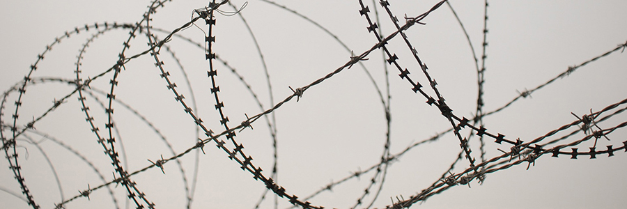 barbed-wire-900x300px