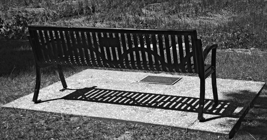 toni_morrison_bench_by_the_road_cogwell